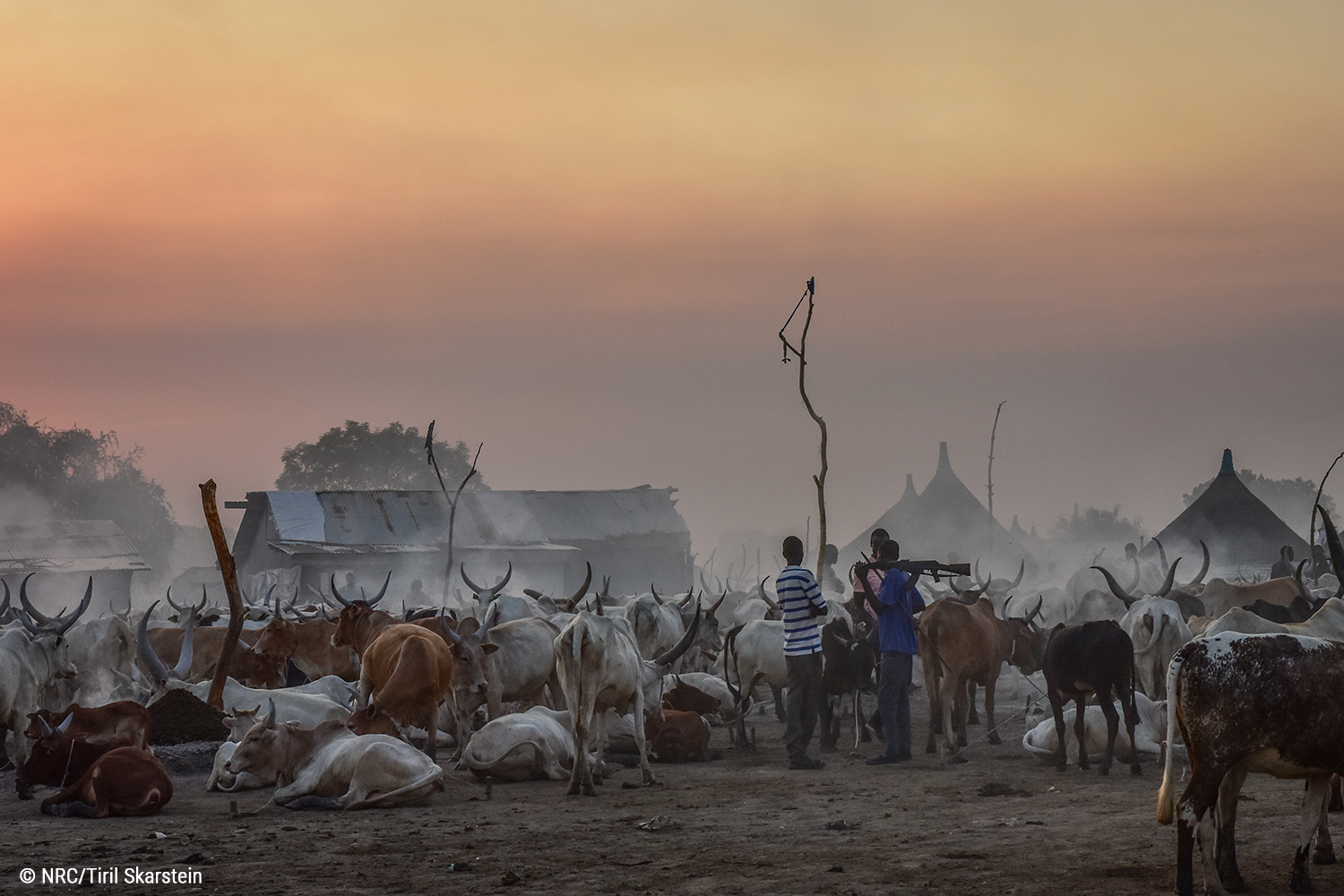 south_sudan_photo_nrc_tiril_skarstein.png